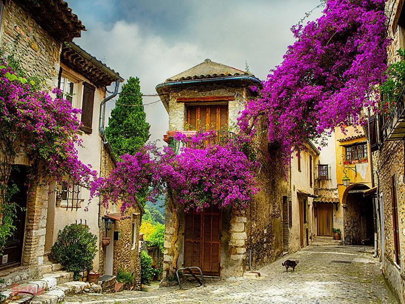 Marsilya & Provence Turu