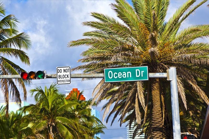Miami & Orlando Turu - 2