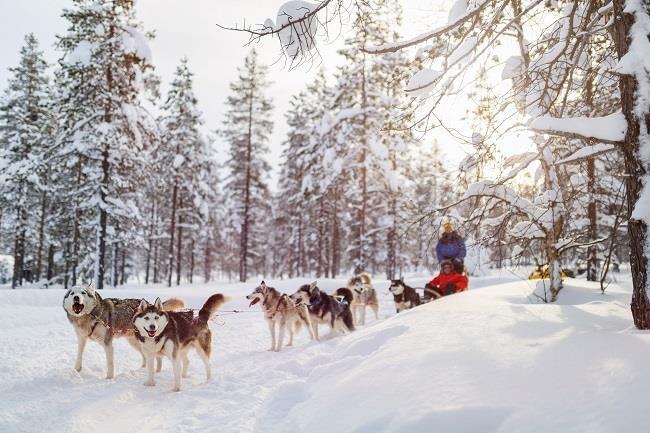Laponya Turu SE - Çifte Yılbaşı (Tornio)