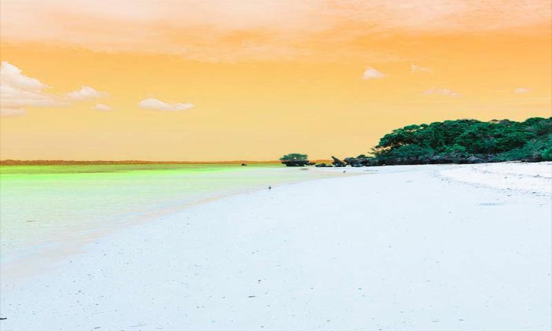 Pemba Adası'nda Bambaşka Bir Sualtı Deneyimi