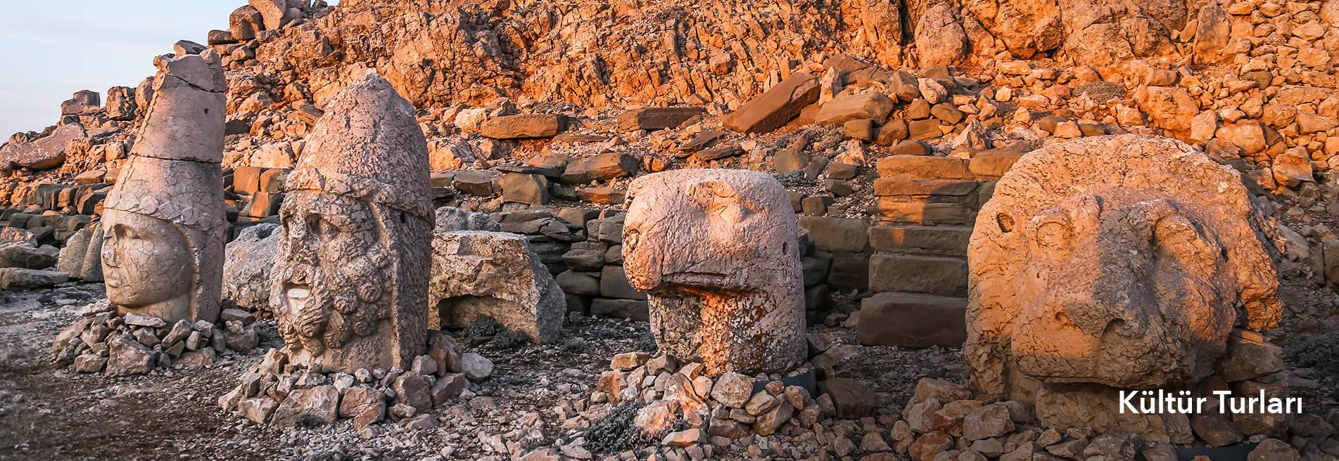 tum-yurtici-kultur-turlari