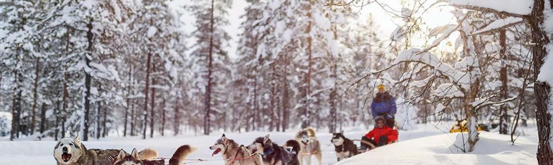 Laponya Turları